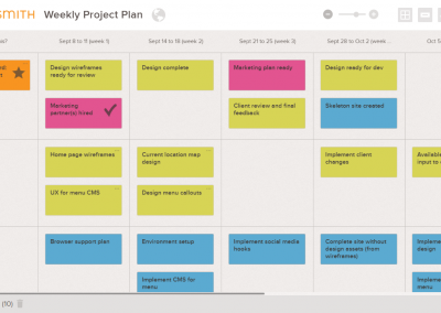 Weekly Project Plan
